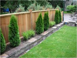Backyard Privacy Fence Ideas Backyard Backyard Fence Ideas Fearsome Backyard Privacy Fences