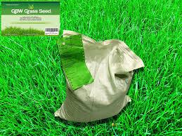 fast growing grass seed for crafts all about grass