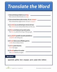 sentences in spanish worksheet education com