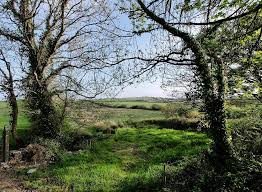 Holiday Cottages Ireland by Knockerra Kilrush Co Clare Bluebell Cottage Holiday Cottages