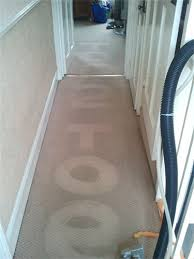 northampton carpet cleaning carpet cleaning pictures