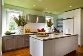 Used Kitchen Cabinets Tampa by Espresso Kitchen Cabinets Pictures Ideas U0026 Tips From Hgtv Hgtv