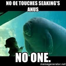Seaking Meme - no oe touches seaking s anus no one overlord manatee meme