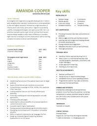 Senior Web Designer Resume Sample Sample Web Designer Resume Entry Level Web Developer Resume