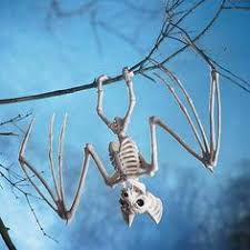 Halloween Skeleton Dog Decoration by Our Wickedly Detailed Skeleton Dogs Are Begging To Stay At Your