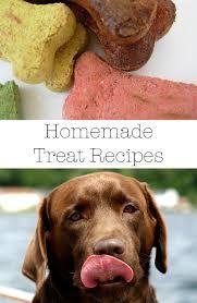 recipes for dog treats dog treats the best free recipes the labrador site