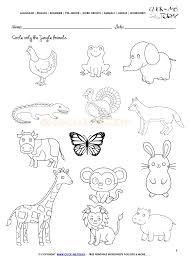 animals worksheet activity sheet circle 4