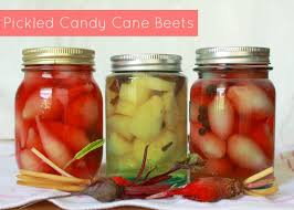 where to buy pickle candy canes pickled candy beets pin jpg