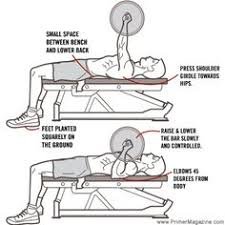 A Good Bench Press Weight 8 Common Errors In 8 Common Exercises Bench Press Benches And