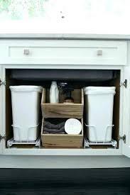 Bathroom Sink Storage Solutions The Sink Organization Ideas Juniorderby Me
