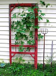 beautiful ideas for metal garden trellis design 17 best images