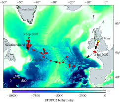 Shark Map Of The World by Transatlantic Migration And Deep Mid Ocean Diving By Basking Shark