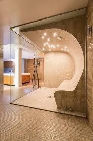 home steam room design prepossessing home ideas pjamteen