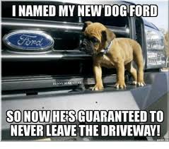 i named my new dog ford funny st so nowheisiguaranteed to never