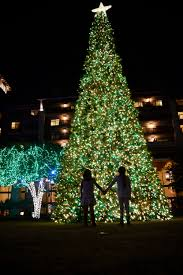 light up your holidays at jw marriott san antonio hill country