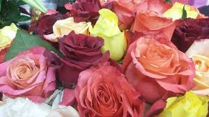 fruit and flowers dunkeld fruit and flowers florist johannesburg gauteng