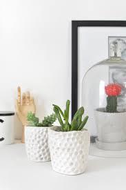 Succulent Planter Diy by Diy Mini Succulent Planters Burkatron