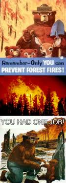 Only You Can Prevent Forest Fires Meme - image 552500 you had one job know your meme