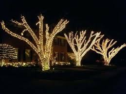 tree straps for landscape lighting outdoor tree lights wrapped tree