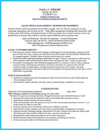Sample Resume Business Development by Marvelous Things To Write Best Business Development Manager Resume