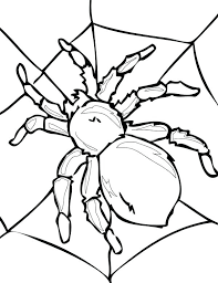 Iron Spider Coloring Pages Tarantula On His Spider Web Coloring Spider Web Coloring Page