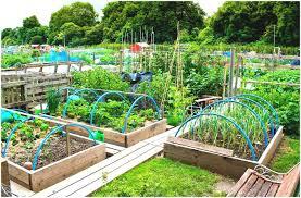 Home Garden Design Youtube Backyards Modern How To Landscape A Big Backyard Landscaping
