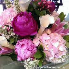 blooms flowers gorgeous blooms flowers gifts in neutral bay sydney nsw