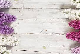 lilac flowers shop wood background lilac flowers wallpaper in flowers leaves