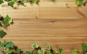 wood wallpaper 997 verdewall