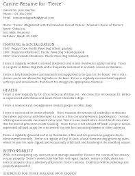 Summer Job Resume Sample High Job Resume Sample Resume Sample