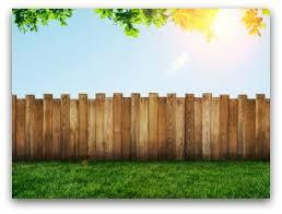 building cheap garden fences ideas and tips