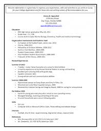 job application cv pdf basic templates download college resume