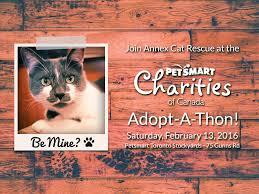 be mine petsmart adopt a thon