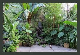tropical garden in california gardens pinterest tropical