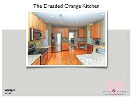 Best Kitchen Cabinet Colors What Is The Best Kitchen Cabinet Color To Use When Your Kitchen Is