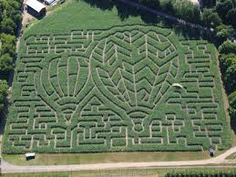halloween city in roseville mi the 20 best biggest and scariest michigan corn mazes to get lost