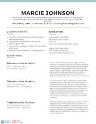 analyze novel essay functional resume of an accountant popular