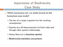 biodiversity video example of biodiversity pe ppt download