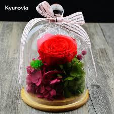 rose in glass kyunovia valentine s day birthday fresh rose flower preserved in