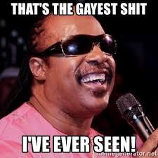 Gayest Meme Ever - that s the gayest shit i ve ever seen stevie wonder meme