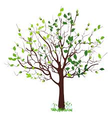 image of tree free download clip art free clip art on
