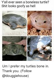 Turtle Meme - y all ever seen a boneless turtle shit looks goofy as hell