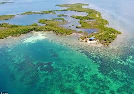 belize airbnb man swaps suit for flip flops and sets up a belize airbnb daily