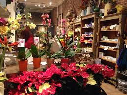 floral shops flower shops nelly s flower shop zuzu s petals steve s