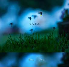 among a thousand fireflies children u0027s book shows the sweet alien