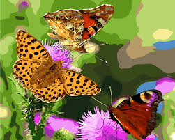 popular butterfly flower painting buy cheap butterfly flower