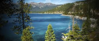 hotel near south lake tahoe beach and marina forest suites resort