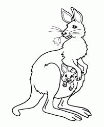 sélection de coloriage kangourou à imprimer sur laguerche com page 1