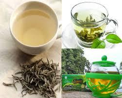 Teh Putih teh putih dan teh hijau mana yang terbaik distributor teh jamus