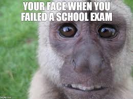 Monkey Face Meme - when you failed a school exam imgflip